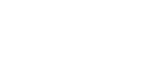 Special Touch Home Care Logo
